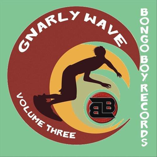 Bongo Boy Records: Gnarly Wave, Vol. 3