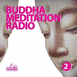 Buddha Meditation Radio, Vol. 2 - Relaxation and Wellness Music