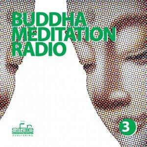 Buddha Meditation Radio, Vol. 3 - Relaxation and Wellness Music