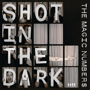 A Shot In The Dark