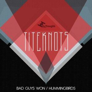 Bad Guys Won / Hummingbirds
