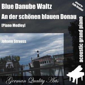 Blue Danube Waltz Medley ( Piano ) [feat. Falk Richter]