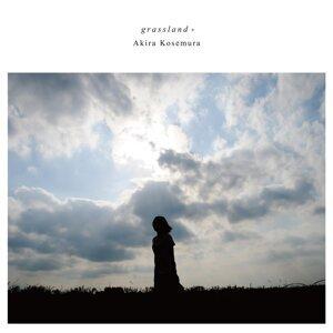 Grassland +