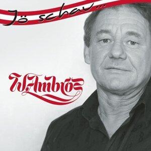 Jö schau... Wolfgang Ambros