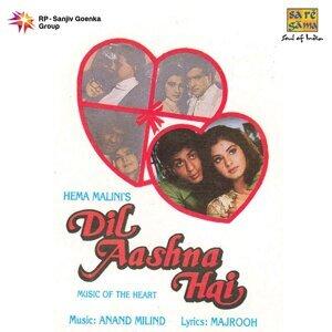 Dil Aashna Hai - Original Motion Picture Soundtrack