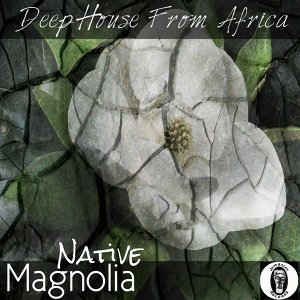 Magnolia - Deep House from Africa