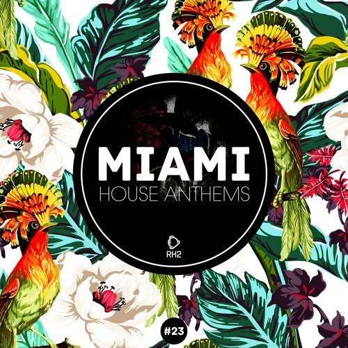 Miami House Anthems, Vol. 23