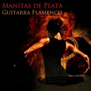 Guitarra Flamenco