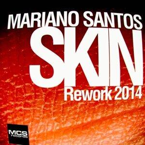 Skin - Rework 2014