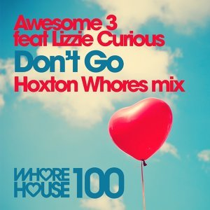 Don't Go - Hoxton Whores Remix