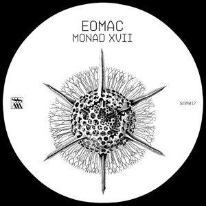 Monad XVII