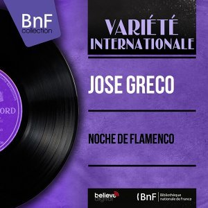 Noche de Flamenco - Mono Version