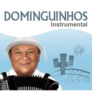 Dominguinhos Instrumental