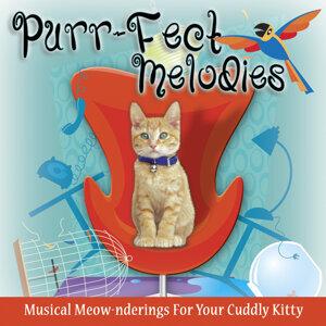 Purr-Fect Melodies