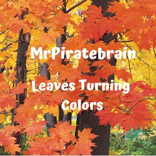 Leaves Turning Colors