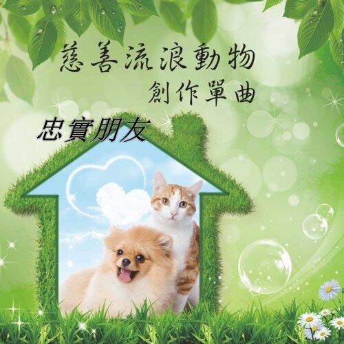 Loyal friend (忠實朋友) - Charity stray animal creation single