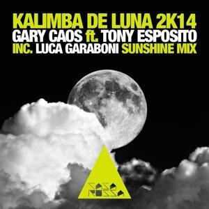 Kalimba De Luna 2K14