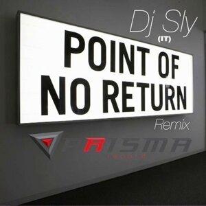 Point of No Return - Remix