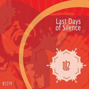 Last Days of Silence