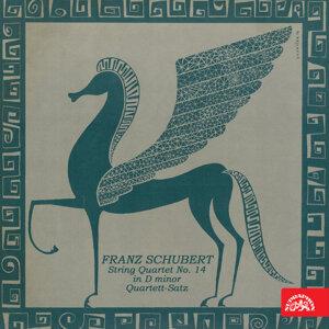Schubert: String Quartet No. 14 in D Minor, Quartett-Satz