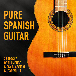 Pure Spanish Guitar, Vol. 1 (25 Tracks of Flamenco Gipsy Classical Guitar)