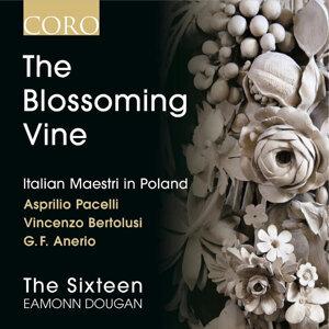 The Blossoming Vine: Italian Maestri in Poland
