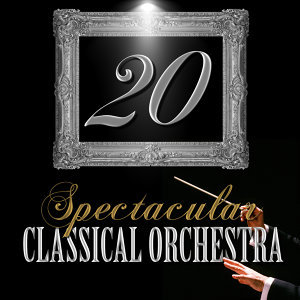 20 Spectacular Classical Orchestra