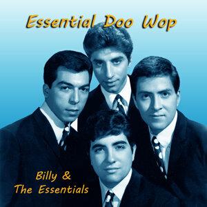 Essential Doo Wop