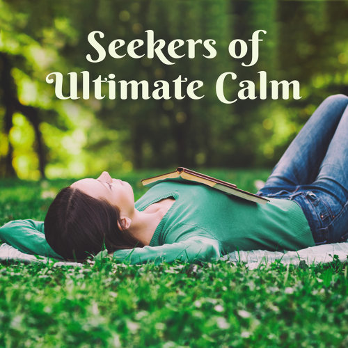 Seekers of Ultimate Calm - Need of Relaxation, Wellness Journey, Silence Brings Peace, Achieve Serenity