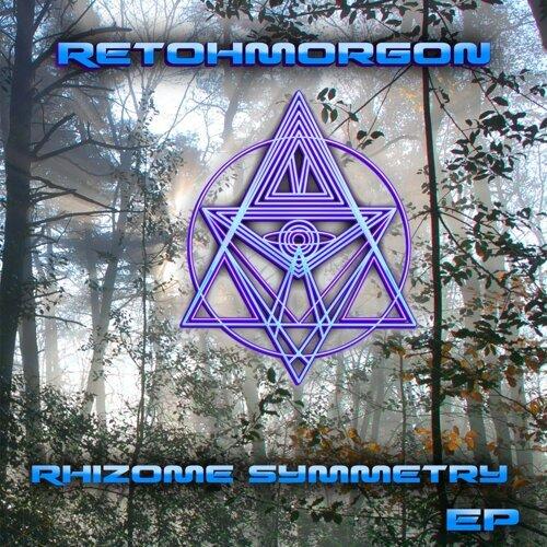 Rhizome Symmetry