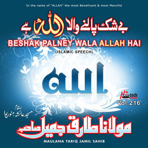 Beshak Palney Wala Allah Hai, Vol. 216 - Islamic Speech