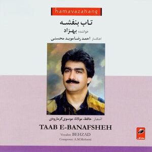 Taab-e-Banafsheh(Iranian Traditional Music)