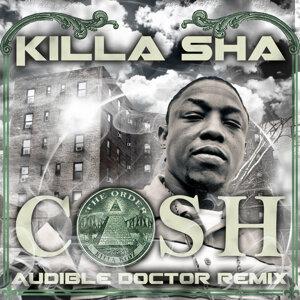 Cash (Audible Doctor Remix)