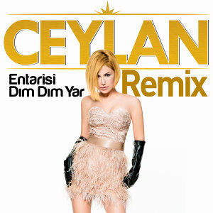 Entarisi Dım Dım Yar (Remix)