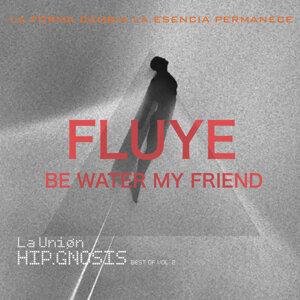 Fluye. Be Water My Friend