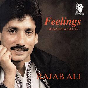 Feelings (Ghazals & Geets)