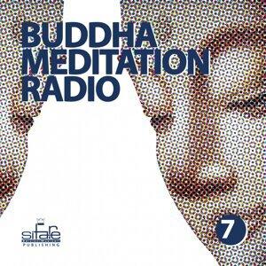 Buddha Meditation Radio, Vol. 7 - Relaxation and Wellness Music