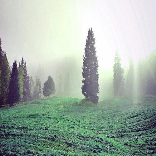 Natural : Beautiful Nature (Culture)