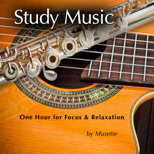 Study Music (Classical Guitar & Flute at the Beach)