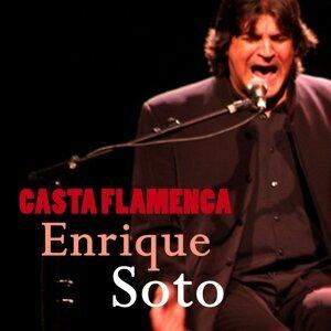 Casta Flamenca