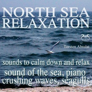 North Sea Relaxation - Sound of the Sea, Piano, Crushing Waves, Seagulls, Sounds to Calm Down and Relax