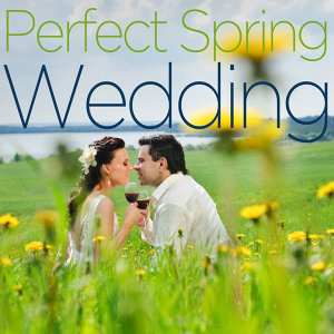 Perfect Spring Wedding - Beautiful Instrumental Piano Music Like Falling in Love, Canon in D, Here Comes the Bride, From This Moment on, The Way You Look Tonight, And More!