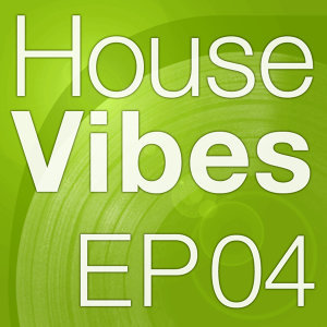 Mettle Music Presents House Vibes4