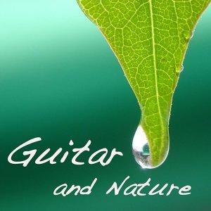 吉他 and 性质