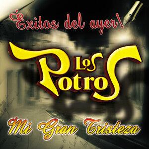 Mi Gran Tristeza - Exitos Del Ayer