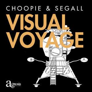 Visual Voyage