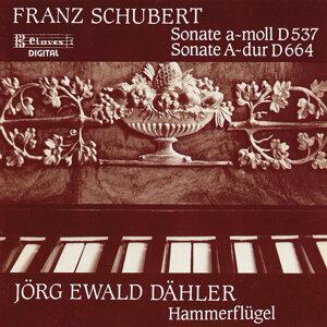 Schubert Sonatas on Brodmann's Hammerklavier