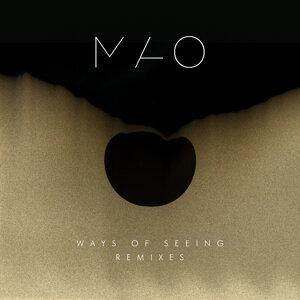 Ways of Seeing (Remixes)