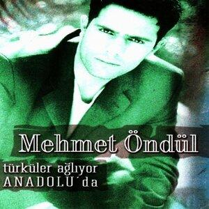 Türküler Ağlıyor Anadolu'da
