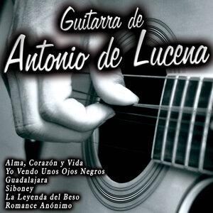 Guitarra de Antonio de Lucena